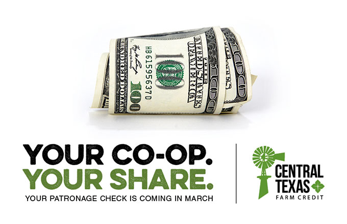 You Co-op. Your share.
